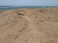 Выбор песка с берега моря на Арабатской стрелке осуществляется с согласия губернатора