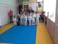 19 апреля в с. Стрелковом прошел  детский турнир по дзюдо