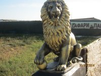 Сафари парк на Арабатской стрелке!!!(фото и видео)
