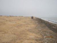 Шум Азовского моря на Арабатской стрелке в декабре!!!(фото и видео)