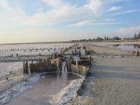 Розовая соль на Арабатской стрелке с. Приозерное