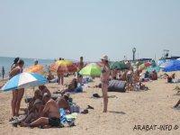 Арабатская стрелка отдых у моря 2015!!!!