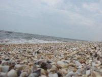 Столичные журналисты включили Арабатку и Бирючий в рейтинг лучших пляжей страны