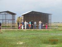 27.06.2015 Сафари - Парк  на Арабатской стрелке (фото и видео)