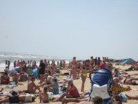 На Арабатской стрелке больше недели дует свежий ветер,а туристов все больше(фото)