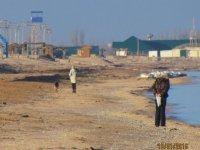 13 января Азовское море на Арабатской стрелке (фото и видео)