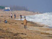 Предпоследние дни января на Арабатской стрелке(фото и видео)