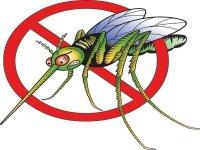 В апреле месяце на Арабатской стрелке будет проводиться дезинсекция комаров.